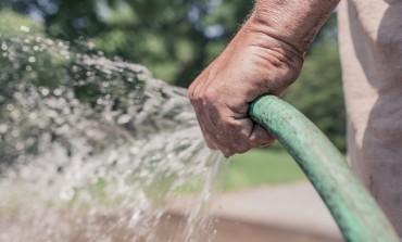 Rolnictwo, ogrodnictwo i turystyka czekają na wdrożenie dyrektywy o pracownikach sezonowych. Nowe przepisy mają ułatwić zatrudnianie cudzoziemców