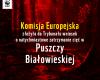 Komisja Europejska złożyła do Trybunału wniosek o natychmiastowe zatrzymanie cięć w Puszczy Białowieskiej