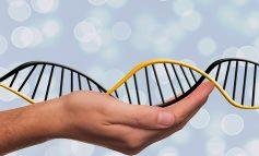 Czy wynik prywatnego testu na ojcostwo może być wykorzystany w sądzie