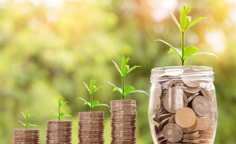 Kredyt dla początkującego przedsiębiorcy, czyli jak zdobyć środki na własną działalność