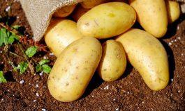 Ziemniaki w sklepach muszą być znakowane symbolem flagi kraju pochodzenia. Weszły w życie nowe przepisy